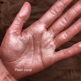 Пигменты Make up Secret MAKEUP EMOTIONS серии Love Story Pearl coral