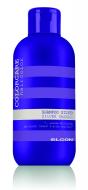 Шампунь с серебристым оттенком ELGON COLOR CARE Silver Shampoo, 1000 мл: фото