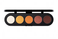Тени прессованные палитра 5 цветов Т31 натуральные тона 10 г: фото
